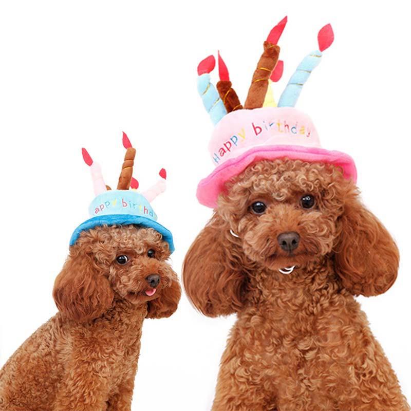 ペット用品 愛猫用 愛犬用 帽子 誕生日パーティー かわいい キャップ帽子